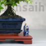 Kép 3/4 - Bonsai asztal - barna