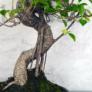 Kép 3/3 - Ficus (fikusz) - hajlított törzsű, törzs