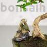 Kép 2/2 - Kertészkedő bonsaimester szobor - 7 cm